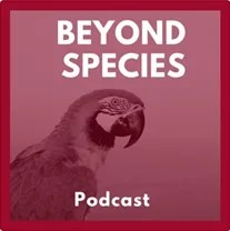 Beyond Species Logo